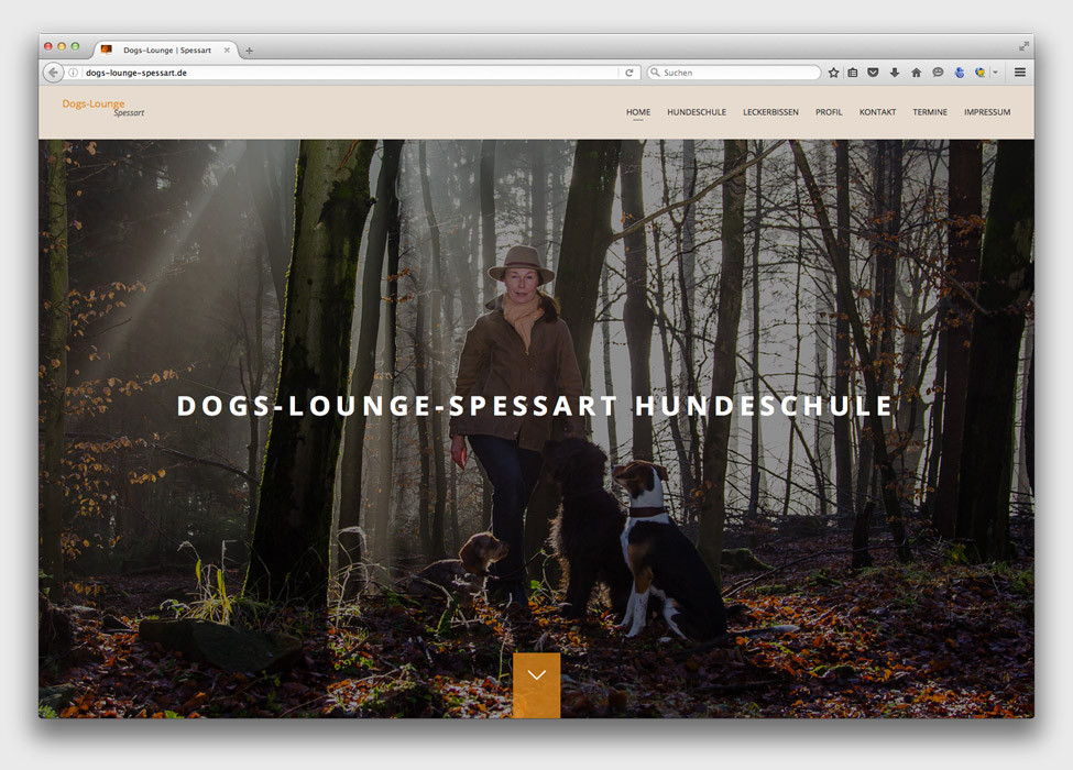 Dogs-Lounge-Spessart_Hundeschule